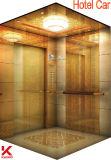 ステンレス製の手すりが付いている敏感なホテルのエレベーター