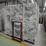 Het Witte Marmer van Cochia van Arabescato, het Wit van Carrara, het Witte Marmer van Vento Carrara