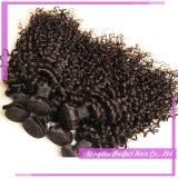 Weave romance Curlextensions do cabelo humano da alta qualidade 100