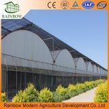 Fabricant Film Plastique Agricole à Effet de Serre / Résistant aux UV Plastique 200 Micron Film à Effet de Serre