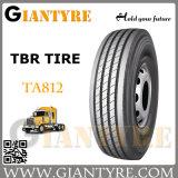 Camion e Bus Tire/Tyres (TA812)