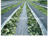 Tecido de controle de plantas daninhas de plástico a longo prazo ambientalmente seguro