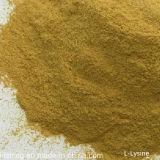 Additifs alimentaires L pente d'approvisionnement d'alimentation de L-Lysine de la lysine 98%