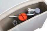 Wc de cerámica Toiet de una sola pieza Siphonic estupendo con Saso/Ce