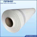 Matte de toile de polyester Ecosolvent 260g pour l'extérieur de l'impression