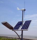 örtlich festgelegter Wind-Turbine-Generator der Schaufel-300W