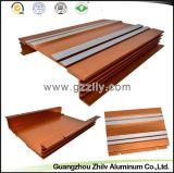 Perfil de aluminio de la venta caliente para el bastidor del coche