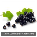 Извлеките 35% Anthocyanins Blackcurrant (AC521)