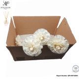 Difusor de cana ap secos de vime bricolage Sola Flower 8mm Dianthus caryophyllus 6PCS/caixa