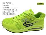 No 51899 ботинки Sasual ботинка зеленых и голубых людей Stock