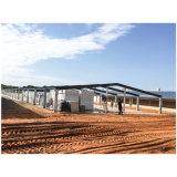 Chambre de poulet préfabriquée Constructure en acier utilisé pour la ferme avicole