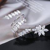 Luxuxanweisungkubikzircon-Stein-Silber-Farben-Ring