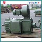 Zzj, Z, Z4 Series Electric DC Motor