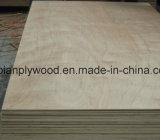 madera contrachapada del abedul del grado de los muebles de 18m m