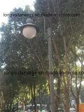indicatore luminoso del giardino 20watt in sosta