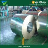 Фабрика сделала Dx51d польностью трудные гальванизированные стальные катушки