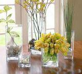 prix d'usine Vase en verre clair pour mariage/Vase de fleurs/pot de fleur/ (JINBO. 12)