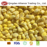 Qualidade superior de grãos de milho doce congelada