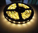 5054 LED Light Strip 60LEDs / M utilisé sur l'éclairage décoratif