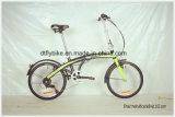 Vélo se pliant de vente chaude de l'Amérique du Sud, bicyclette se pliante en acier,