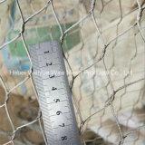 Edelstahl gesponnene Drahtseil-buchsenversehene Ineinander greifenaviary-Filetarbeit