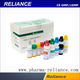 Diagnosereagensflasche für pharmazeutische flüssige Plombe, mit einer Kappe bedeckende Maschine