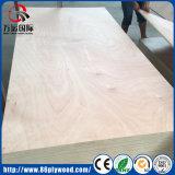 madera contrachapada comercial de la madera dura de la alta calidad de 1220X2440 18m m