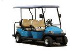Пассажиры модели 8 горячего автомобиля сбор винограда сбывания электрического шикарные