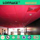 Scheda acustica delle mattonelle del soffitto di alta qualità