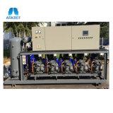 Attrezzatura di refrigerazione tipo pistone dell'unità del compressore della singola fase