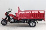 중국 3 짐수레꾼 기관자전차 판매