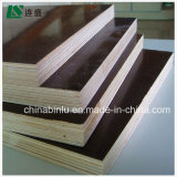 La película llena de la construcción del álamo hizo frente al fabricante de la madera contrachapada de Linyi