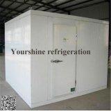 찬 룸, 저온 저장, 음식을%s 출입 가능 냉장고