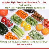 Taglierina automatica del macchinario di trasformazione delle verdure dell'alimento