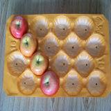 Welt-aller Markt färben umweltfreundliches pp. Plastikwegwerftellersegment der unterschiedlichen Größen-für Frucht