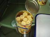 缶詰食品の缶詰にされた赤ん坊トウモロコシ425g