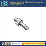 Kundenspezifischer Edelstahl CNC-maschinell bearbeitenzahntrieb-Antriebswellen