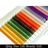 Extensions colorées par qualité de cils de vente en gros de beauté de Lili différentes