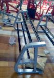 De Apparatuur van de geschiktheid/de Apparatuur van de Gymnastiek/het Rek van de Domoor (10 Paren) (SW33)