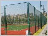 Recinzione provvisoria dell'outfield portatile del fornitore della Cina per i campi atletici, i banchi, le soste & i campi multiuso