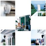 Haut-parleur de musique extérieure de haute performance mini (BS251)