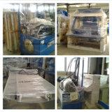 Machine de fabrication de brique creuse automatique de la meilleure qualité Qt6-15b