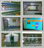 Наиболее востребованных PLC вертикальной стеклянной Beveling машины