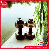 ハンドル(SD-6010)が付いている2.2L製造業者の適性のダンベルの水差し