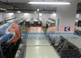 Ambasciata del centro commerciale dell'hotel Using la macchina di raggi X per il controllo del bagaglio (SA5030C)
