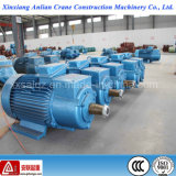 100% kupferner Wire 22kw Wound Rotor WS Induction Electric Motor