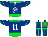Healong a personnalisé l'hockey respirable Jersey d'impression de sublimation de vêtements de sport