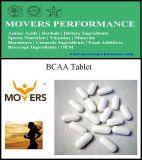 Pas de Tablet 800mg van Bcaa van de Voeding van Sporten aan