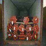 20FT/40FT/40hq Versandbehälter ex Shanghai/Shenzhen nach Osttimor