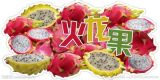 Vente en gros d'extrait de fruits de dragon et de fruits